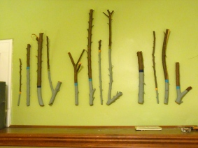 I created this wall installation from some branches left over after some tree pruning.